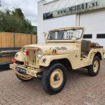 Willys M38a1 Jeep Kuwait